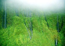 Asaru siena, Havajai, JAV