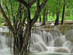 Tad Sae kriokliai, Laosas