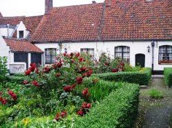 Briugės kiemeliai, Belgija