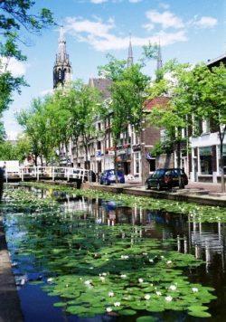 Delftas, Olandija