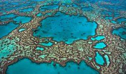 Didysis barjerinis rifas, Australija