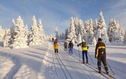 Lillehammer, Norvegija