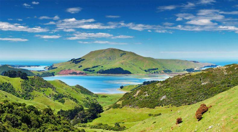 Otago pusiasalis, Naujoji Zelandija
