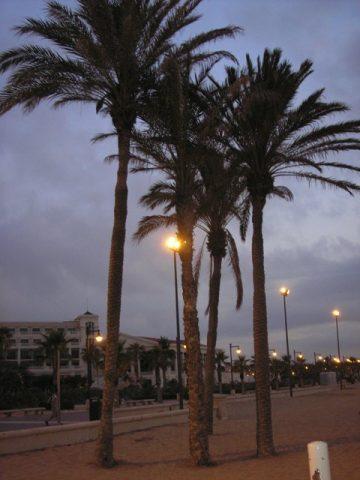 Nuotykiai Valensijoje