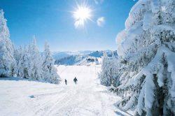 Solis, Austrija