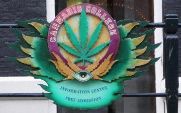 Amsterdamas, Cannabis College