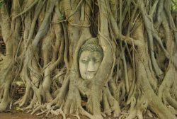 Ayutthaya, Tailandas