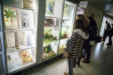 briuselis_farmacijos_muziejus