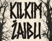 Festivalis Kilkim žaibu 2013 m.