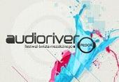 Festivalis Audioriver 2013 m.
