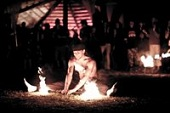 Festivalis Saulėtosios naktys 2013 m.
