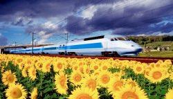 France Rail Pass vs. InterRail France Pass