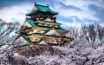 Hanami - žydėjimo periodas Japonijoje