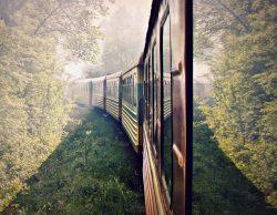 """Fotokonkurso """"Traukiniu keliauk - akimirką pagauk"""" laimėtojas Vaidas Pupelis ir jo darbas """"Pasirinkimas"""""""