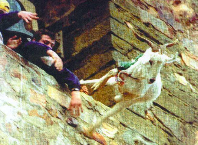Ožkų mėtymo šventė Ispanijoje
