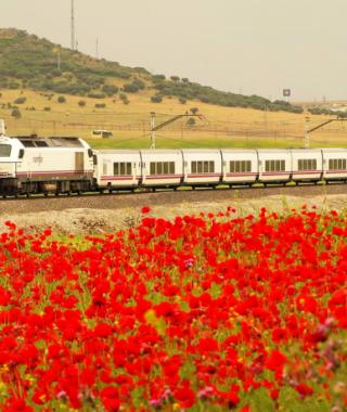 Renfe traukinys Ispanijoje