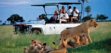 Kelionės šeimai - safaris Afrikoje