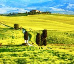 Vieta vestuvėms - Toskana, Italija